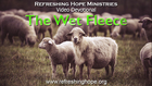 The Wet Fleece