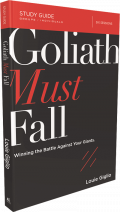 Goliath Must Fall Session 3 — StudyGateway